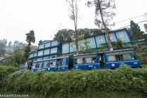 The Toy Train on its way to Darjeeling